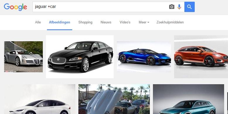 Google zoekopdracht voor Jaguar