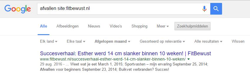 Google-zoeken-op-website